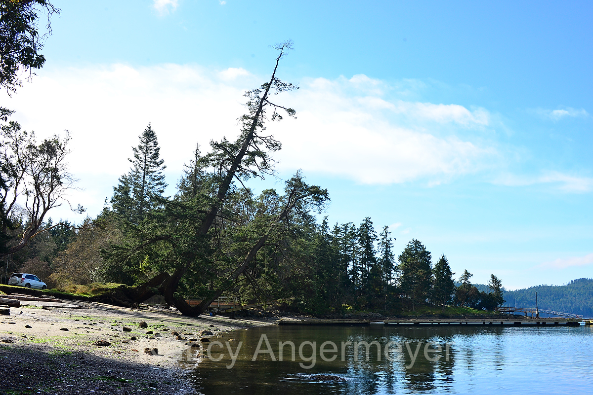 thomson_park_saturna_angermeyer06